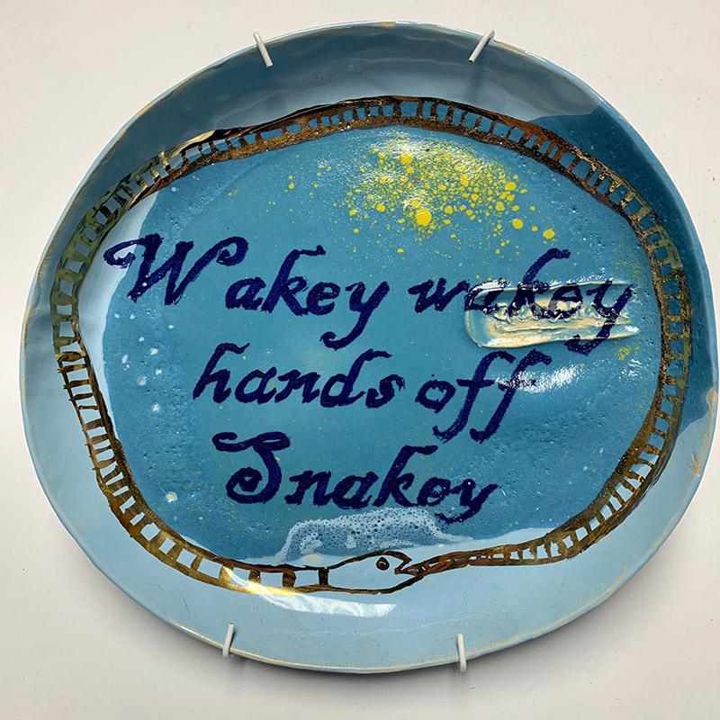 CE2020_Kleynhans_Theo_Wakey Wakey hands off Snakey